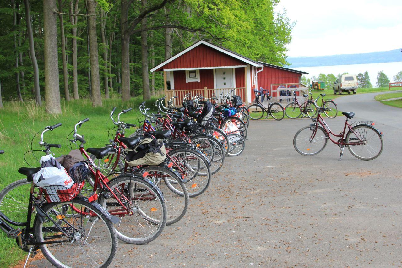 Cyklar i massor