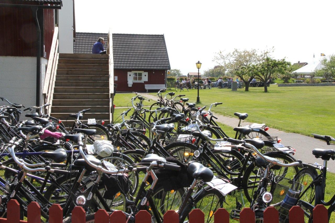 Cyklar i mängder