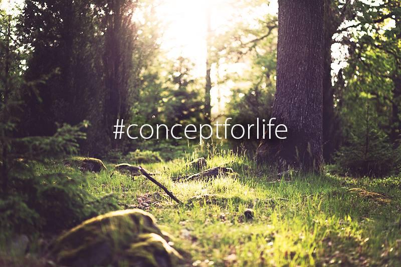 #concept